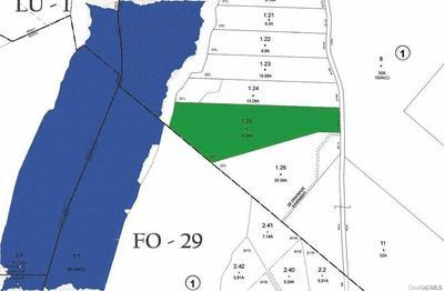 LOT #22 PLANK ROAD, Forestburgh, NY 12777 - Photo 2