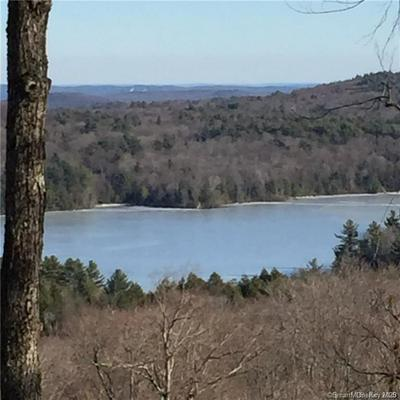 00 WINCHESTER ROAD, Norfolk, CT 06058 - Photo 1