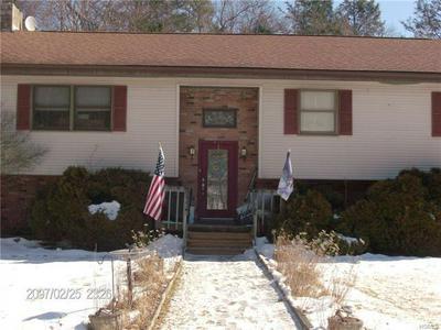 182 COLD SPRING RD, LIBERTY, NY 12754 - Photo 1