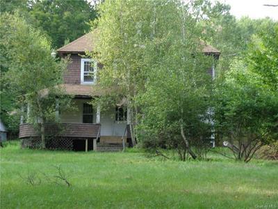 131 TODD RD, Fallsburg, NY 12788 - Photo 1