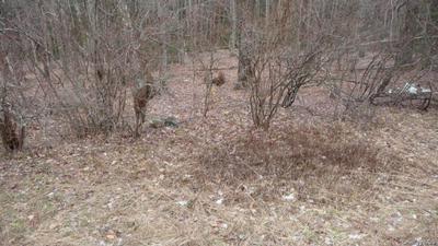 SQUARE WOODS ROAD, Lagrangeville, NY 12540 - Photo 1
