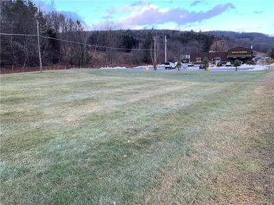 0 STATE ROUTE 55, Neversink, NY 12765 - Photo 2