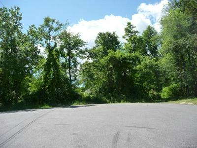 56 MI ANNA DR, Mahopac, NY 10541 - Photo 2