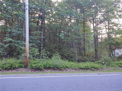 FORESTBURGH ROAD, Lumberland, NY 12737 - Photo 1