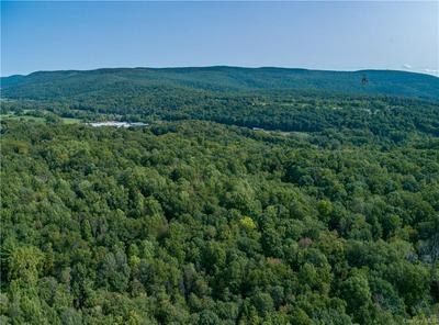 ROUTE 22, Wingdale, NY 12522 - Photo 1
