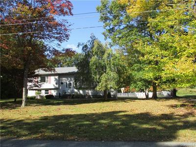 30 LYBOLT DR, Huguenot, NY 12746 - Photo 1