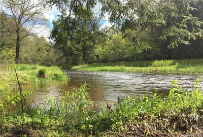CREAMERY ROAD TR 20, Mongaup Valley, NY 12762 - Photo 1