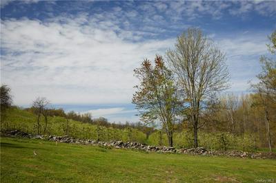 25 ANNS ORCHARD RD, Marlboro, NY 12547 - Photo 2