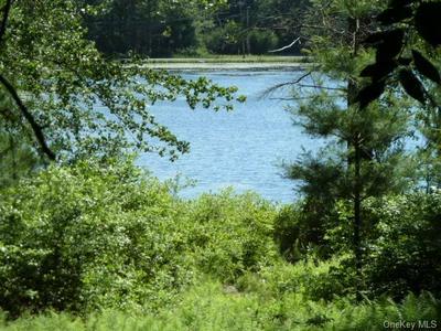 74 WILDWOOD WAY, Forestburgh, NY 12777 - Photo 2