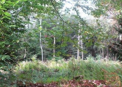 178 FLYNN RD, Parksville, NY 12768 - Photo 2