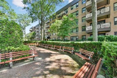 2 BIRCHWOOD CT APT 2L, Mineola, NY 11501 - Photo 1