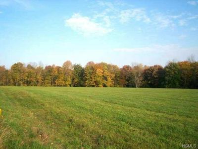 578 LT BRENDER HWY, Bethel, NY 12734 - Photo 2