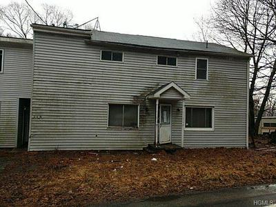 313 HAVILAND DR, PATTERSON, NY 12563 - Photo 1