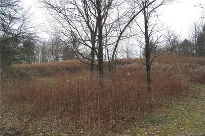 OLD GLEN WILD ROAD TR 103, Fallsburg, NY 12789 - Photo 1