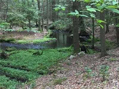 1101 SACKETT LAKE RD, Forestburgh, NY 12777 - Photo 2