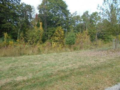 ROUTE 9D, Fishkill, NY 12524 - Photo 2