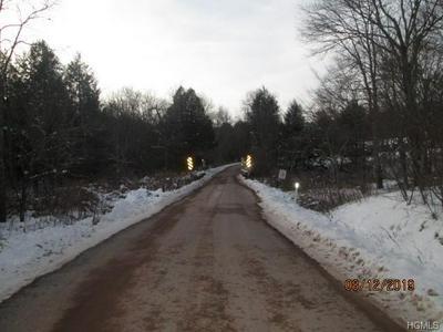 2 STRONG RD, Thompson, NY 12734 - Photo 2