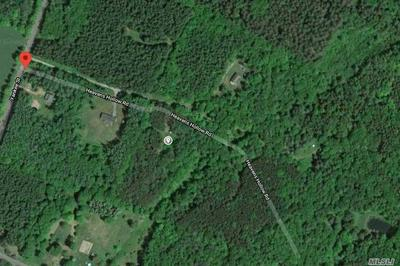 LOT 7 HEAVENS HOLLOW DRIVE, Out Of Area Town, NY 12175 - Photo 1