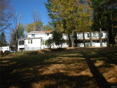 143 ST JOSEPHS HILL RD, Forestburgh, NY 12777 - Photo 2