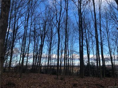 HOPPENSTEDT ROAD, Wallkill, NY 12589 - Photo 2