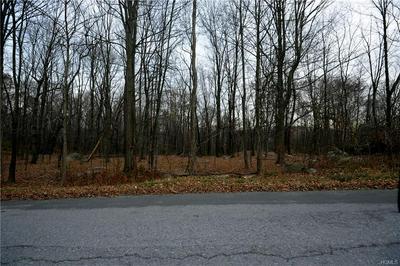 SOUTH ROAD, Pawling, NY 12564 - Photo 2