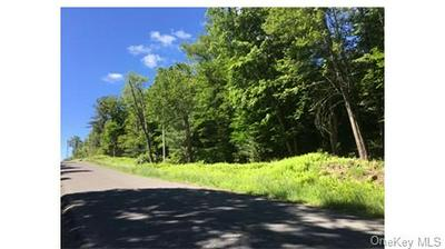 LOT 11.29 HILLTOP ROAD, Monticello, NY 12701 - Photo 1