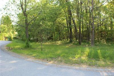 56 ROUTE 209, Port Jervis, NY 12771 - Photo 2