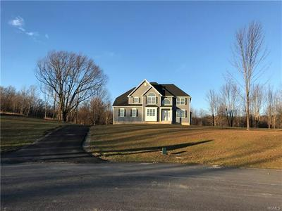 46 DELFINA, POUGHQUAG, NY 12540 - Photo 2