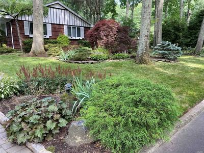 8 JEANNE RD, Lake Grove, NY 11755 - Photo 2