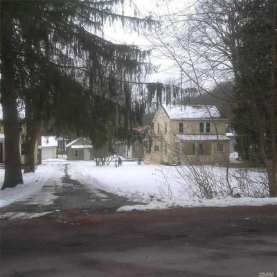 31 BUSHNELL AVE, Monticello, NY 12701 - Photo 2