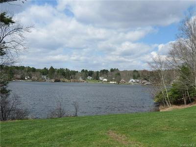 6819 STATE ROUTE 52, Cochecton, NY 12726 - Photo 2