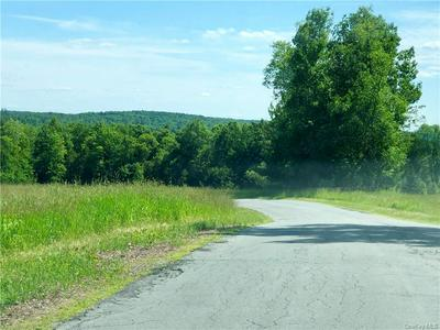 129 OLD COUNTY RD, Cochecton, NY 12726 - Photo 1