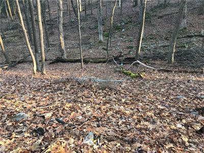 204 FRANKE RD, Deerpark, NY 12746 - Photo 1