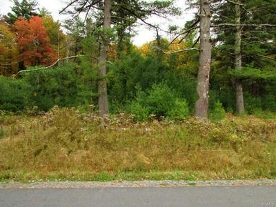 168 JOYLAND RD, Thompson, NY 12701 - Photo 1