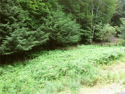 COUNTY ROUTE 125 ROAD, Callicoon Center, NY 12724 - Photo 2