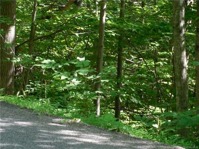 TRAVER HOLLOW ROAD, Boiceville, NY 12412 - Photo 1