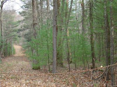 ROUTE 42, Forestburgh, NY 12777 - Photo 2