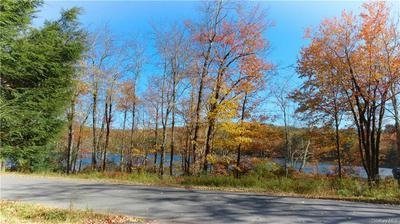 151 MICHIGAN RD, Fallsburg, NY 12788 - Photo 2