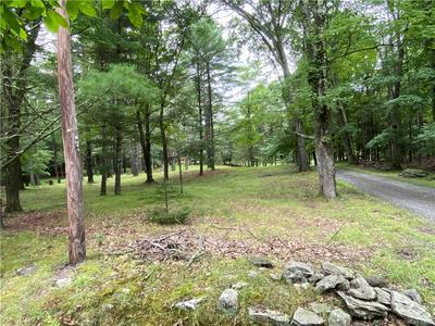 TBD DEWITT, Woodstock, NY 12498 - Photo 1