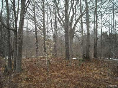 UPPER FERNDALE ROAD, Liberty Town, NY 12754 - Photo 2