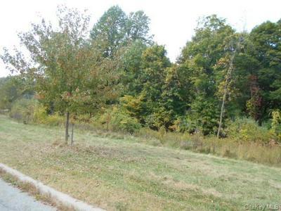 ROUTE 9D, Fishkill, NY 12524 - Photo 1