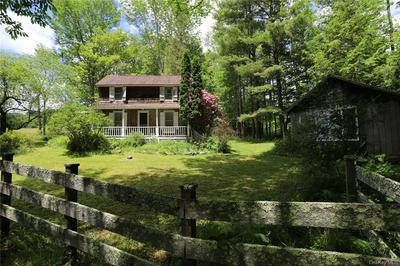 155 WILLIAM BROWN RD, Fremont, NY 12741 - Photo 1