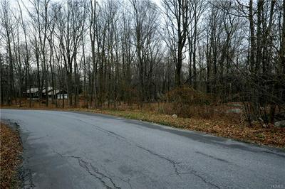 SOUTH ROAD, Pawling, NY 12564 - Photo 1