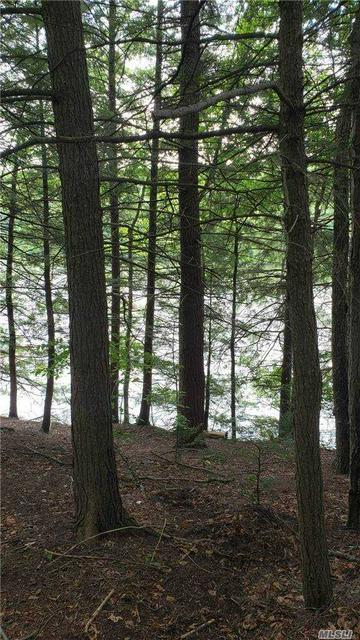233A LAKE SHORE DR, Montebello, NY 12701 - Photo 2
