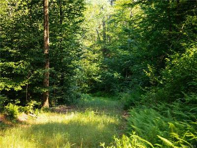 LOT 2 WOODSTONE TRAIL, Lumberland, NY 12737 - Photo 2