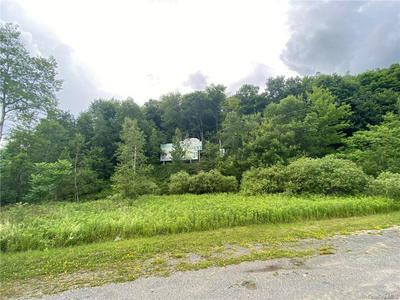 INTERSTATE 86, Parksville, NY 12768 - Photo 2