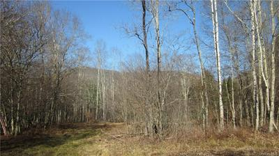 BURNWOOD ACRES ROAD, East Branch, NY 13783 - Photo 2