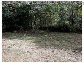 1675 IVYDALE RIDGE RD, Ivydale, WV 25113 - Photo 1