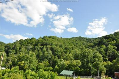 0 OLD RIVER ROAD, Madison, WV 25130 - Photo 2