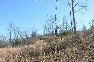 0 MILLER HILL ROAD, Madison, WV 25130 - Photo 2